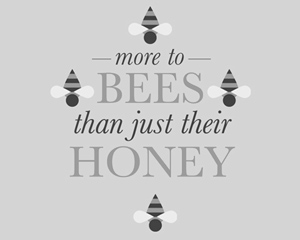 More to Bees than Just their Honey