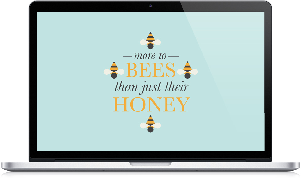 More to Bees home page